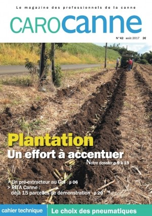 Plantation : un effort à accentuer