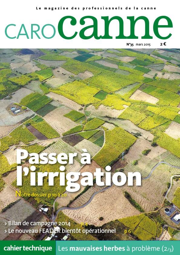 CaroCanne N°35 : passer à l'irrigation