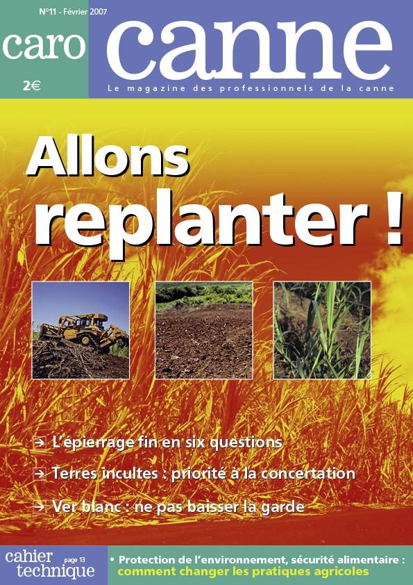 CaroCanne N°11 : Allons replanter