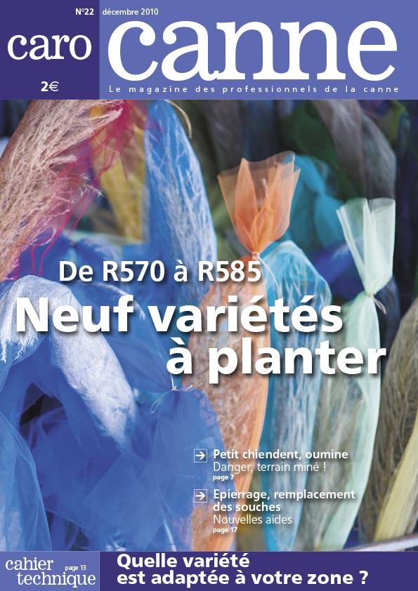 CaroCanne N°22 : de R570 à R585, neuf variétés à planter