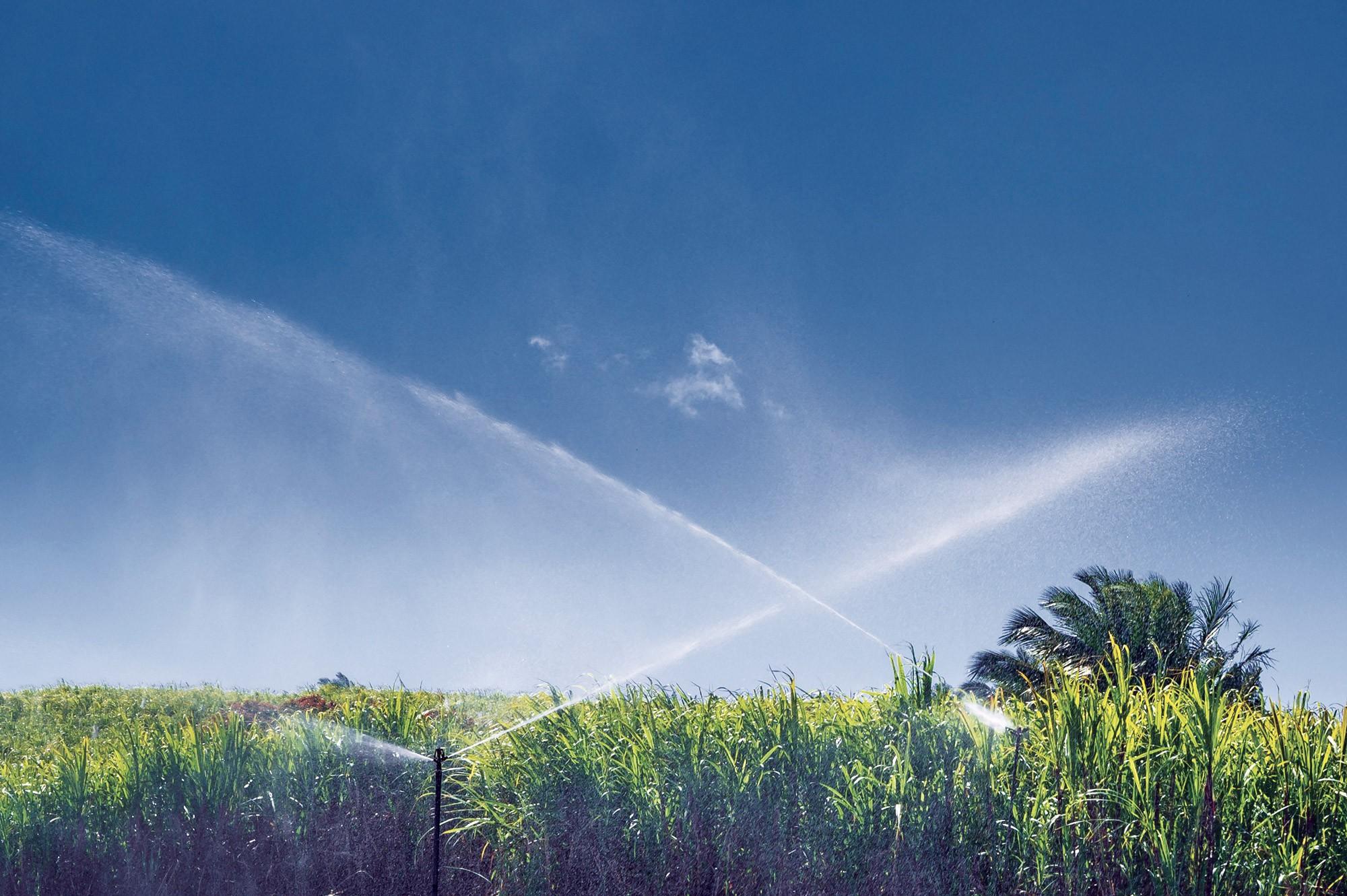 Irrigation : faire les bons choix