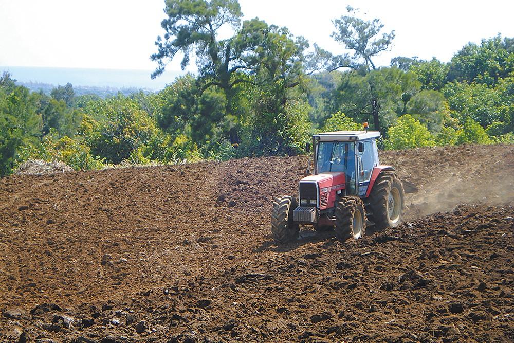 Le travail du sol à la plantation