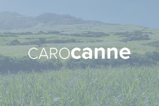 Choix variétal: bilan CanécoH