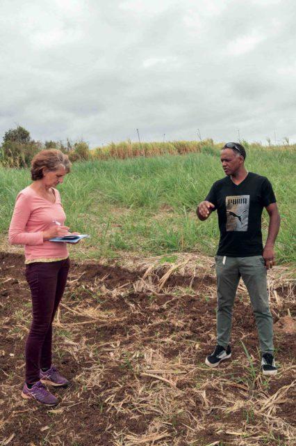 Emmanuelle Goux (Chambre d'agriculture) conseille Fabrice Dijoux.
